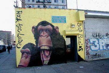BrooklynGraffiti21