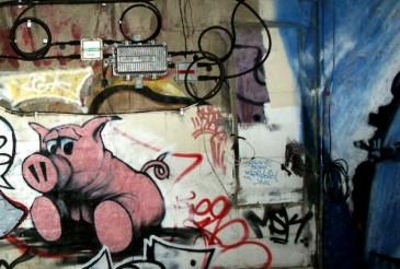 Graf64