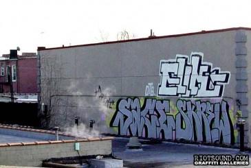 elik_sace