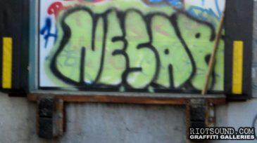 NESAR
