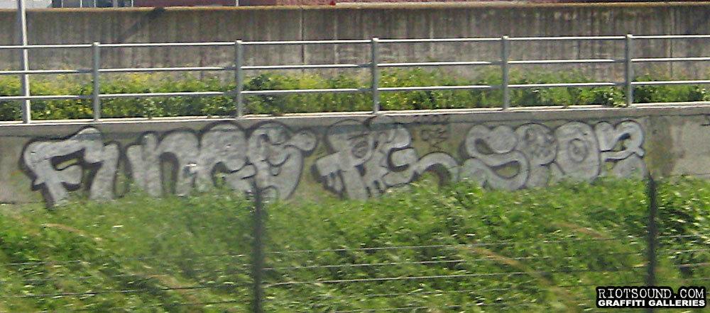 Fungo Graffiti