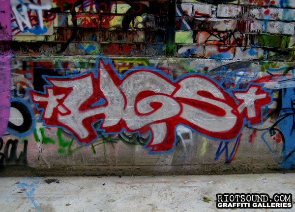 HGS Fillin