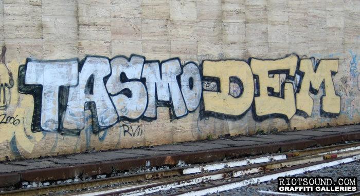 TASMO DEM