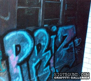 Window_Down_Subway_Graffiti