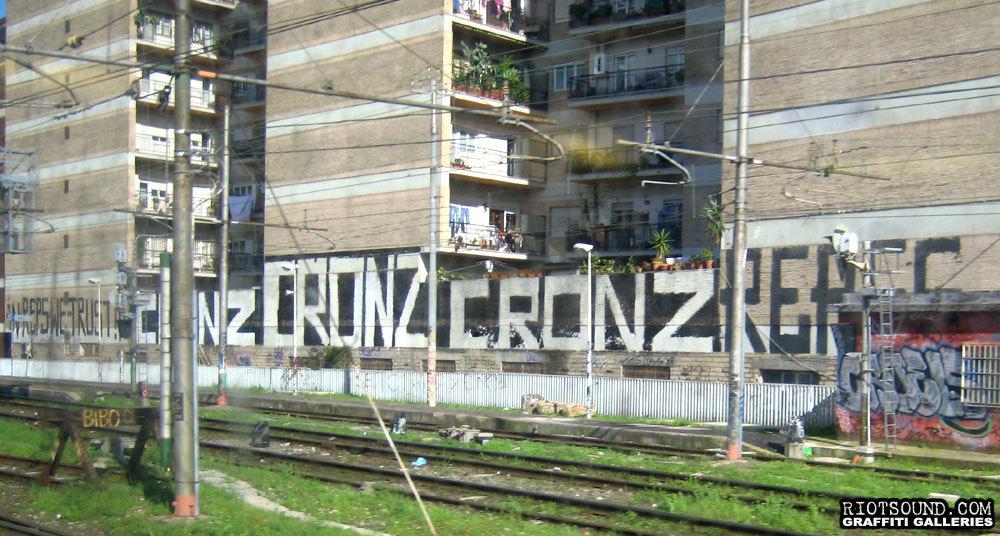 Cronz Paint Rollers